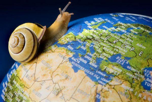 Réseau Alliances Consultants Tourisme - ACT